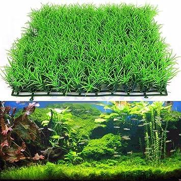 Hemore - Césped Artificial de Hierba de Agua, plástico, para decoración de Peces, 25 x 25 cm: Amazon.es: Productos para mascotas