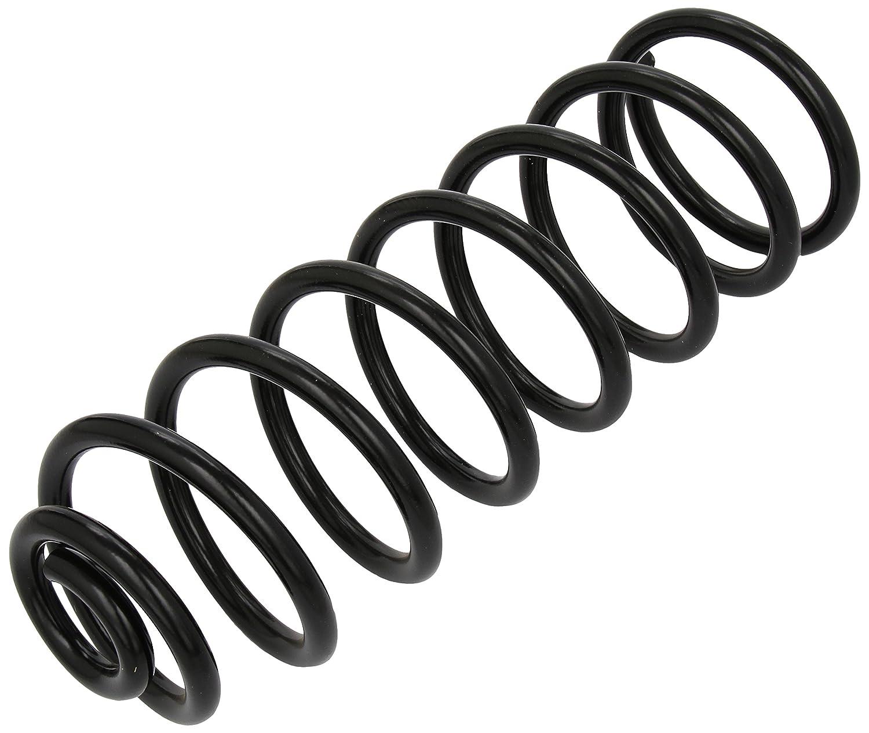 lesjofers 4295811 Coil Spring Rear