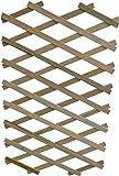 Apollo Gardening Ltd Treillis en bois extensible avec support pour plantes robuste