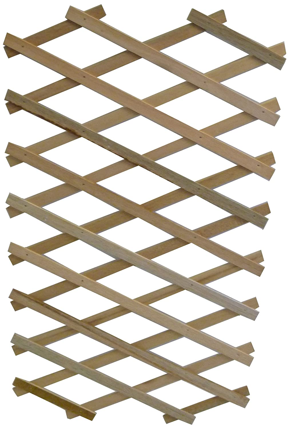 Apollo Expanding Wooden Trellis with Robust Plant Support Apollo Gardening Ltd