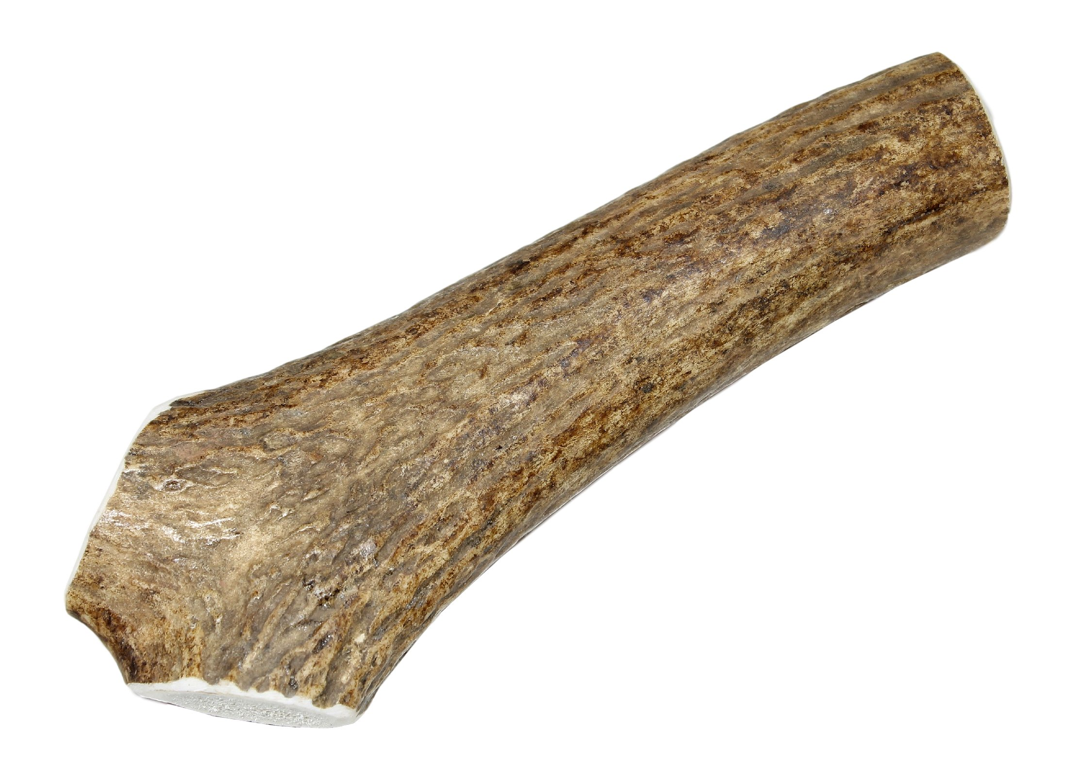 Large, Whole, Single Pack - Grade A Premium Elk Antler Dog Chew for 35 to 65 lb dogs – Naturally shed from wild elk – No Mess, No Odor – Made in the USA by Elkhorn Premium Chews (Image #1)