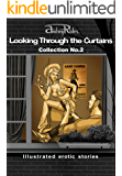 """Looking Through the Curtains"" series of 200 erotic stories. Collection  No. 2 (Stories 26-50): Illustrated sex stories that will wake up your erotic fantasies"