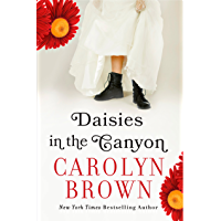 Daisies in the Canyon