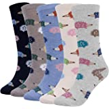 Haley Clothes Hedgehog Pattern Socks Cotton Cute Colorful Animal Pattern Taller Crew Socks For Women (5 Pairs)