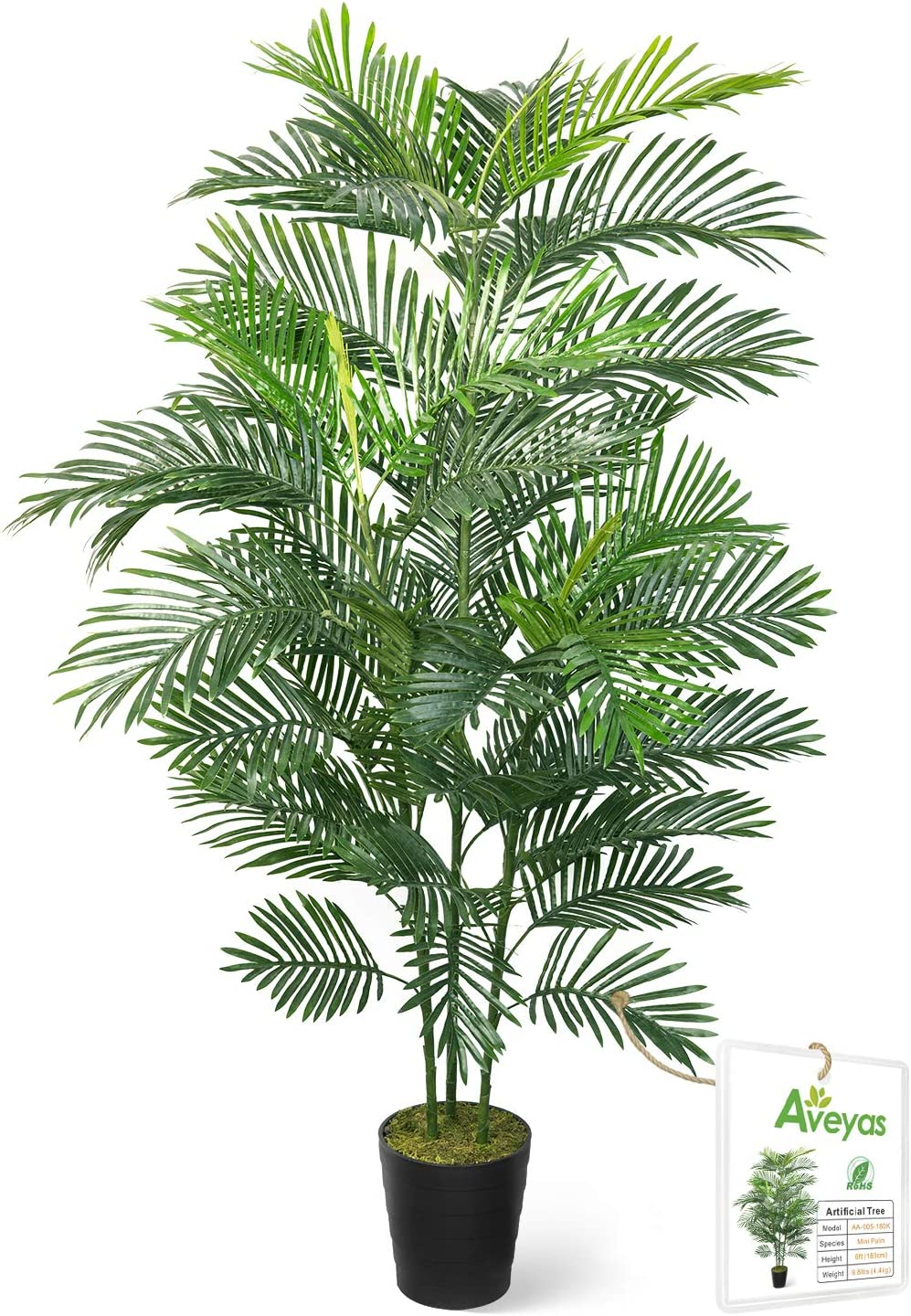 Aveyas 6ft Artificial Kentia Palm Silk Tree in Plastic Nursery Pot, Fake Tropical Plant for Office House Living Room Home Decor (Indoor/Outdoor)