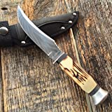 ROUGH RIDER Stag Bone Small HUNTER Fixed Blade Hunting Knife + Sheath! RR1450