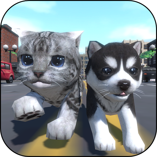 Cute Pocket Cat And Puppy 3D (Best Names For Black And White Kittens)