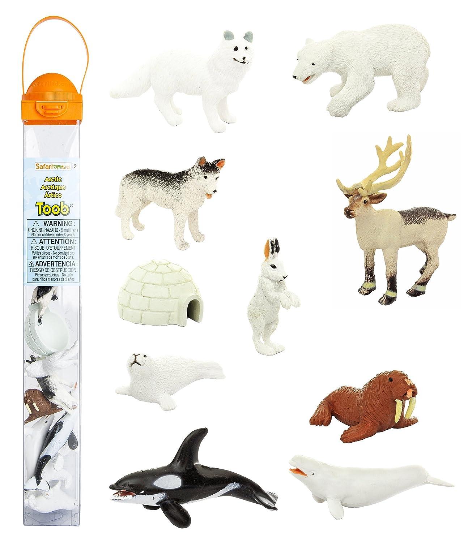 amazoncom safari ltd arctic toob with fun figurines including a harp seal husky caribou arctic rabbit killer whale walrus arctic fox