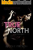 True North (Bad Idea Book 3)
