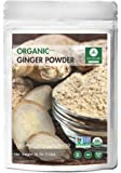 Naturevibe Botanicals Organic Ginger Root Powder (1lb), Zingiber officinale Roscoe | Non-GMO verified and Gluten Free