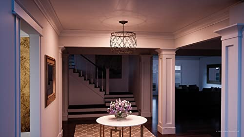 Luxury French Country Chandelier