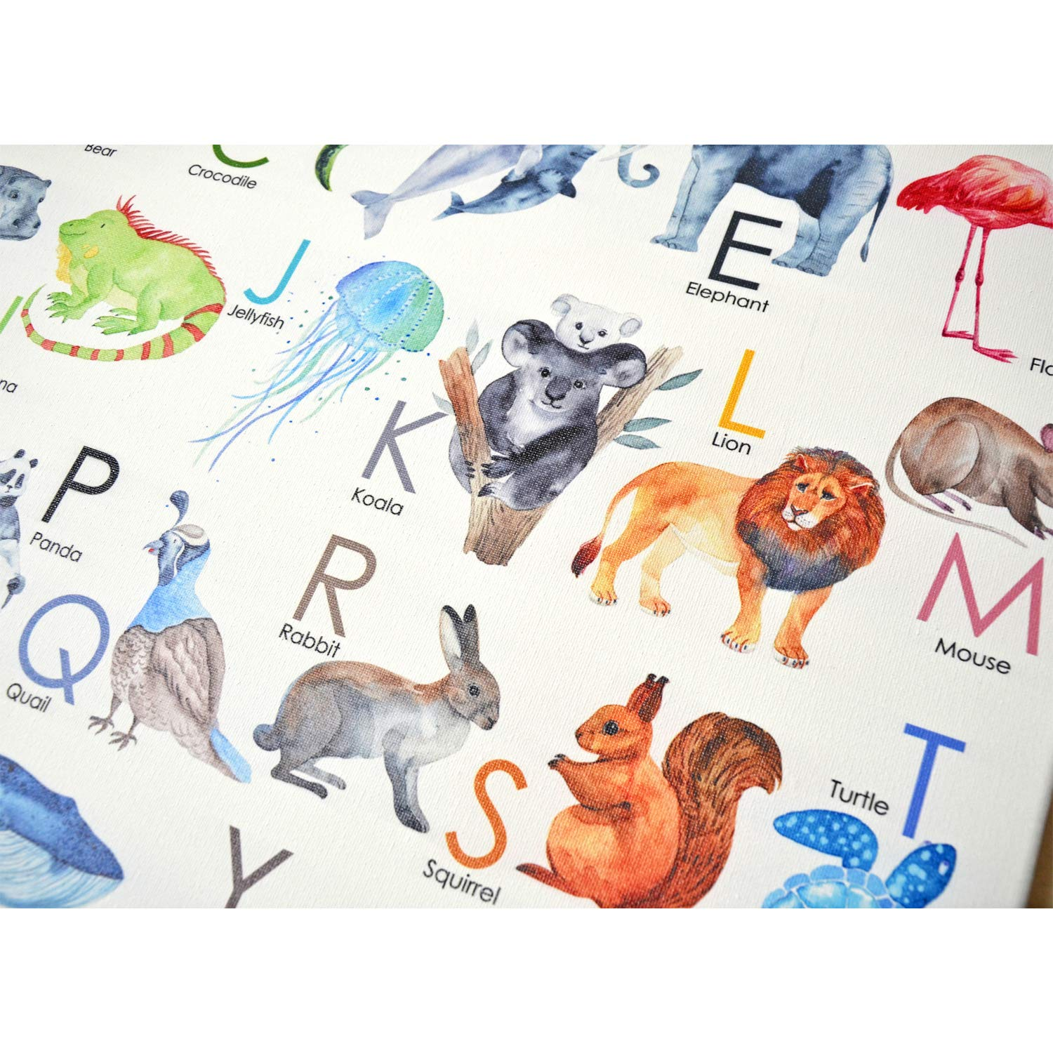 Texture of Dreams Kids Alphabet Letters with Pictures on Large Canvas Wall Art, Preschool Learning Educational Posters, Alphabet Zoo Animal ABC for Kids Toddlers, Baby Nursery Art Prints 24 x 36