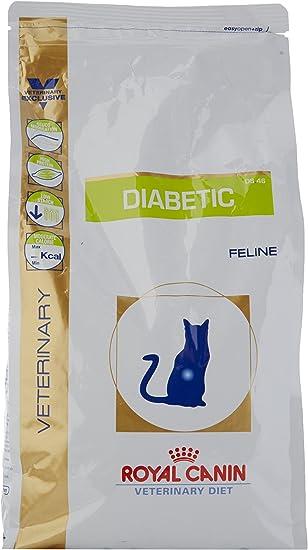 diabetic cat diet how to