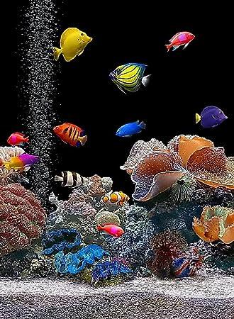 Rectangular imán para frigorífico - agua salada acuario Colorful Fish Tank: Amazon.es: Hogar