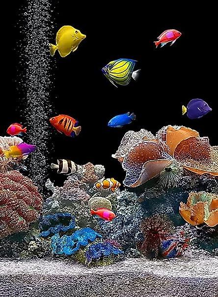 Amazon.com: Rectangle Refrigerator Magnet - Saltwater Aquarium ...