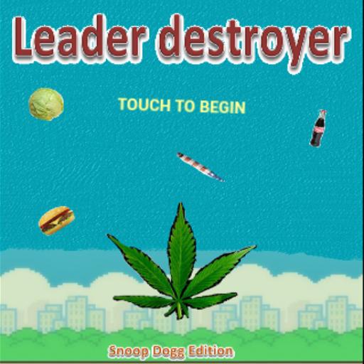 leader-destroyer