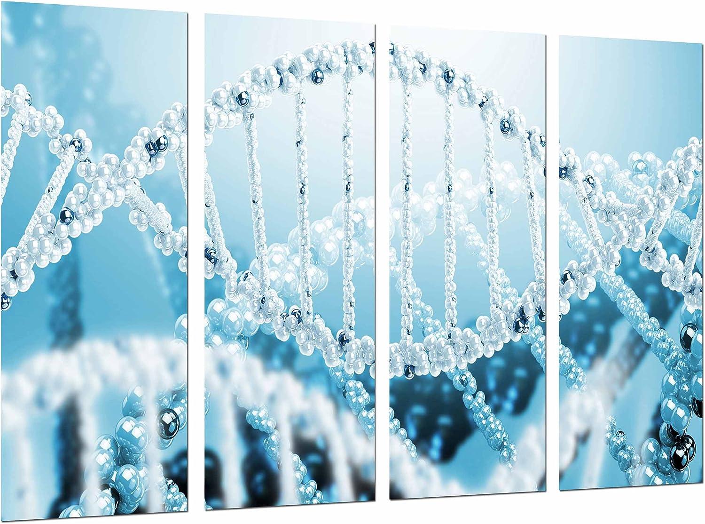 Cuadro Fotográfico Biologia, Ciencia, Cromosoma, Cadena ADN Azul Blanco Tamaño total: 131 x 62 cm XXL