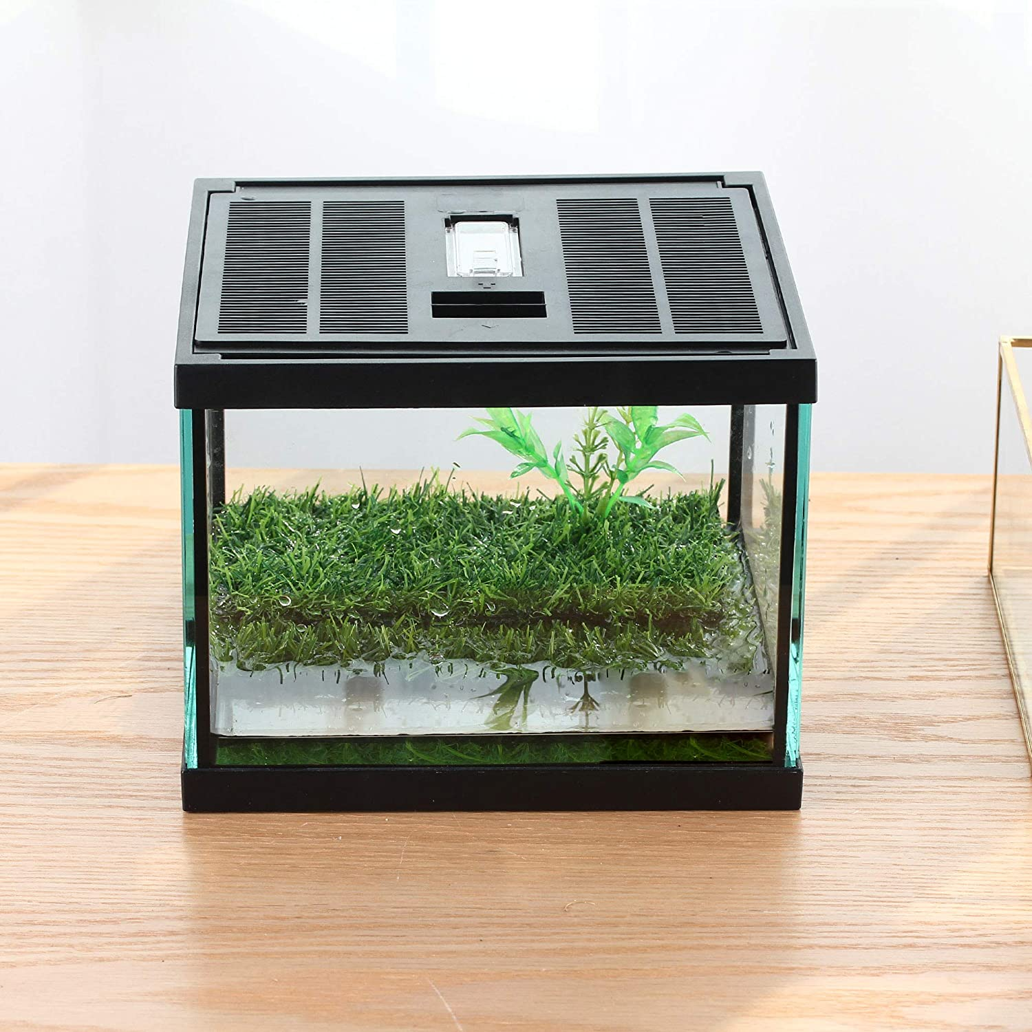 crapelles Pac Frogs Glass Terrarium Feeding kit Tank, Waterproof,for Small Amphibians, Insect, Horned Frogs. Waterweed/Prairie Style Habitat,with Green Artificial Turf Pad, (excluding Animals)