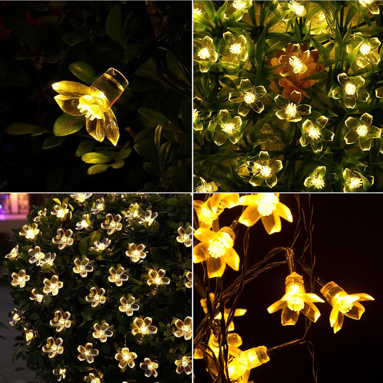 Ankway Solar Lichterkette Led Lichterketten 16ft 30led Lichterkette
