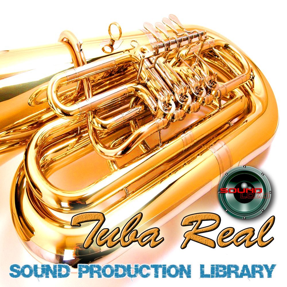 Basson Real - Large Unique 24bit WAVE/KONTAKT Multi-Layer Studio Samples Production Library on DVD or download by SoundLoad (Image #6)