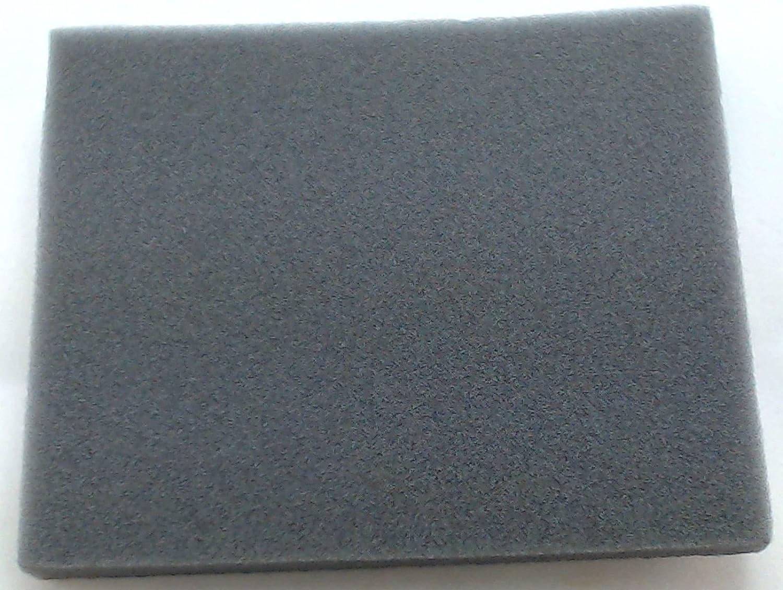 Bissell Vacuum Pre Motor Filter, Style 8 & 14, 2031073