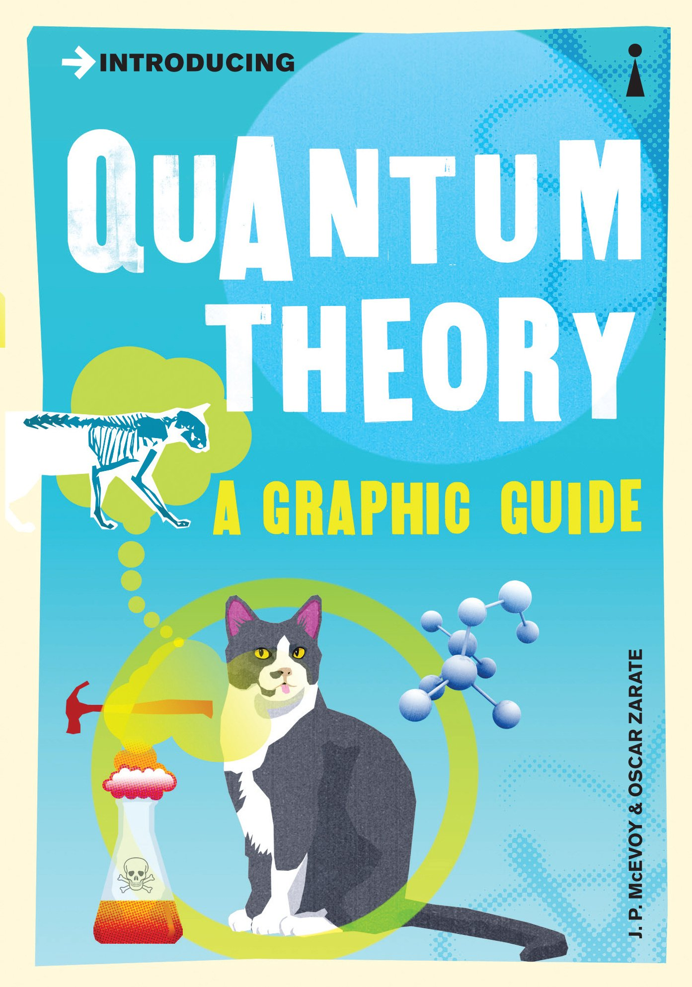Amazon quantum theory books introducing quantum theory a graphic guide to sciences most puzzling discovery fandeluxe Gallery