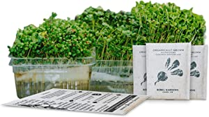 Self-Watering Microgreens Growing Kit - 3 Micro Greens from Non-GMO Seeds - Window Garden or Counter Top - 3 Biodegradable Bamboo Seed Sprouter Pads + Microgreen Tray + Grow Guide