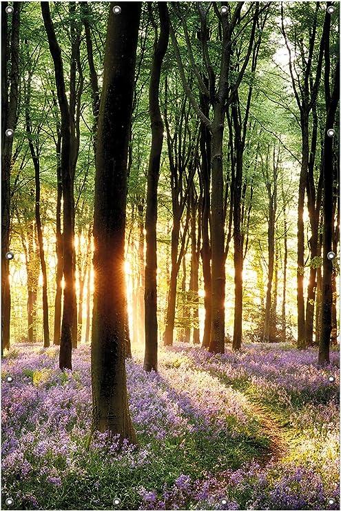 Wallario Garten-Poster Outdoor-Poster 61 x 91,5 cm Tor Wald tor wald baum grün
