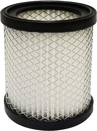 Fartools 101816 - Filtro para aspirador de cenizas 101081: Amazon ...