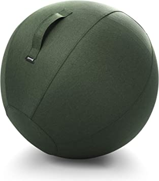 Amazon.com: Joywell Stability Sitting Ball with Cover ...