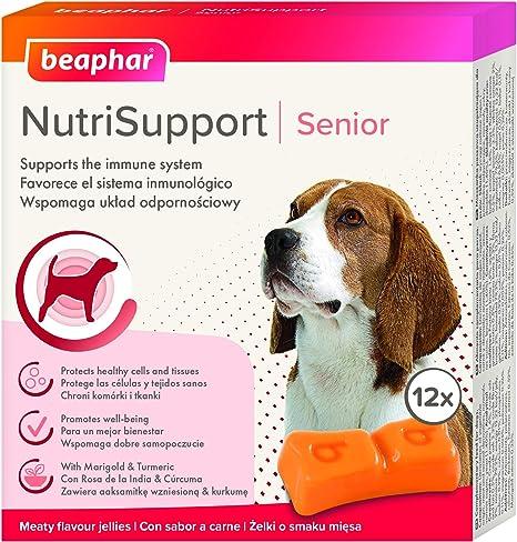 Beaphar Suplemento nutricional Natural NUTRISUPPORT Perro Senior, Gelatina Blanda Perros Ancianos - Caja 12 gominolas