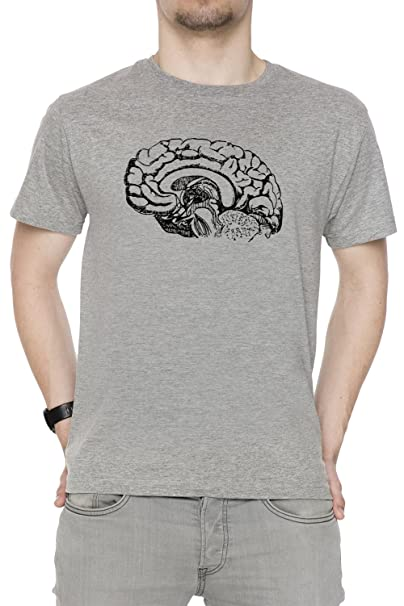 Anatomía Cerebro Hombre Camiseta Cuello Redondo Gris Manga Corta ...