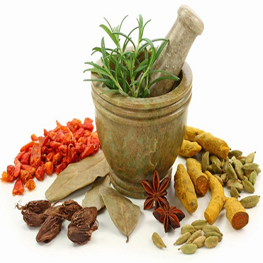 INDIAN AYURVEDIC TREATMENT ()