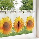 Rideau brise-bise soleil fleur de fleurs pour cuisine et salon/Rideau avec motif fleurs/45x 90cm/Rideau brise-bise transparent pour la cuisine moderne, Polyester, blanc, 45 x 90 cm