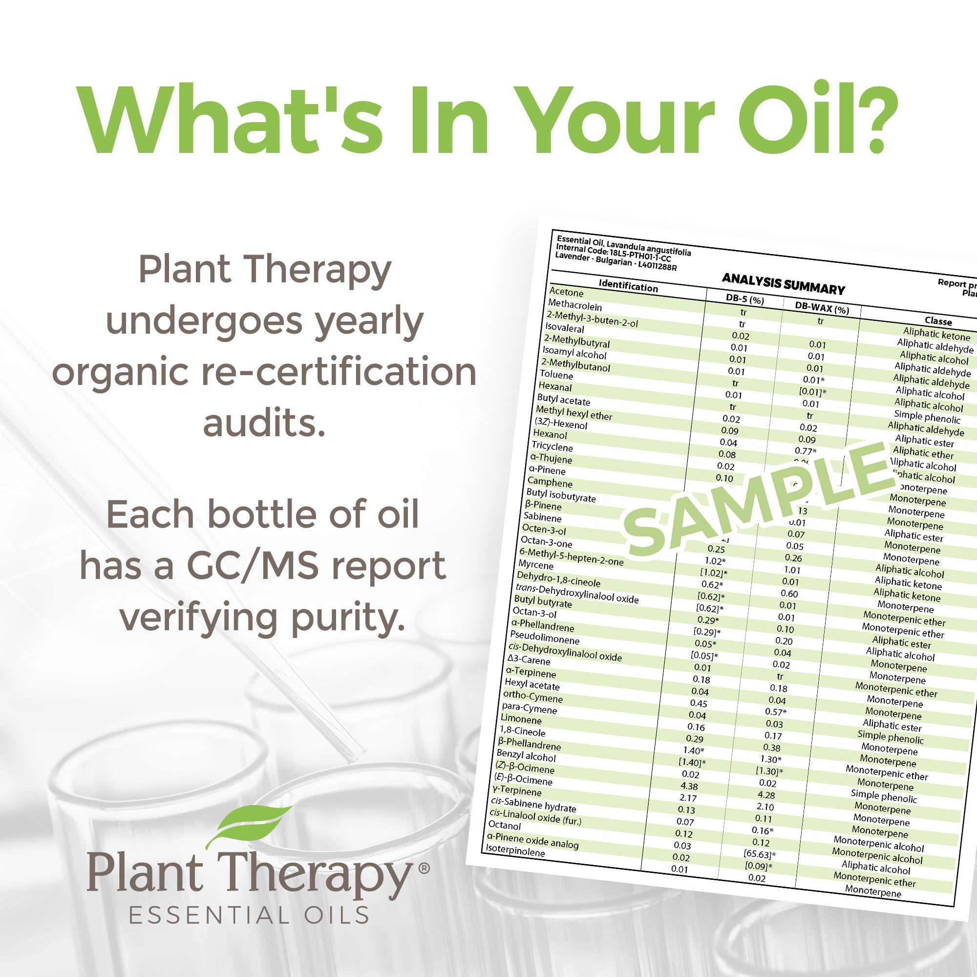Plant Therapy Citronella Organic Essential Oil   100% Pure, USDA Certified Organic, Undiluted, Natural Aromatherapy, Therapeutic Grade   100 Milliliter (3.3 Ounce) by Plant Therapy (Image #4)