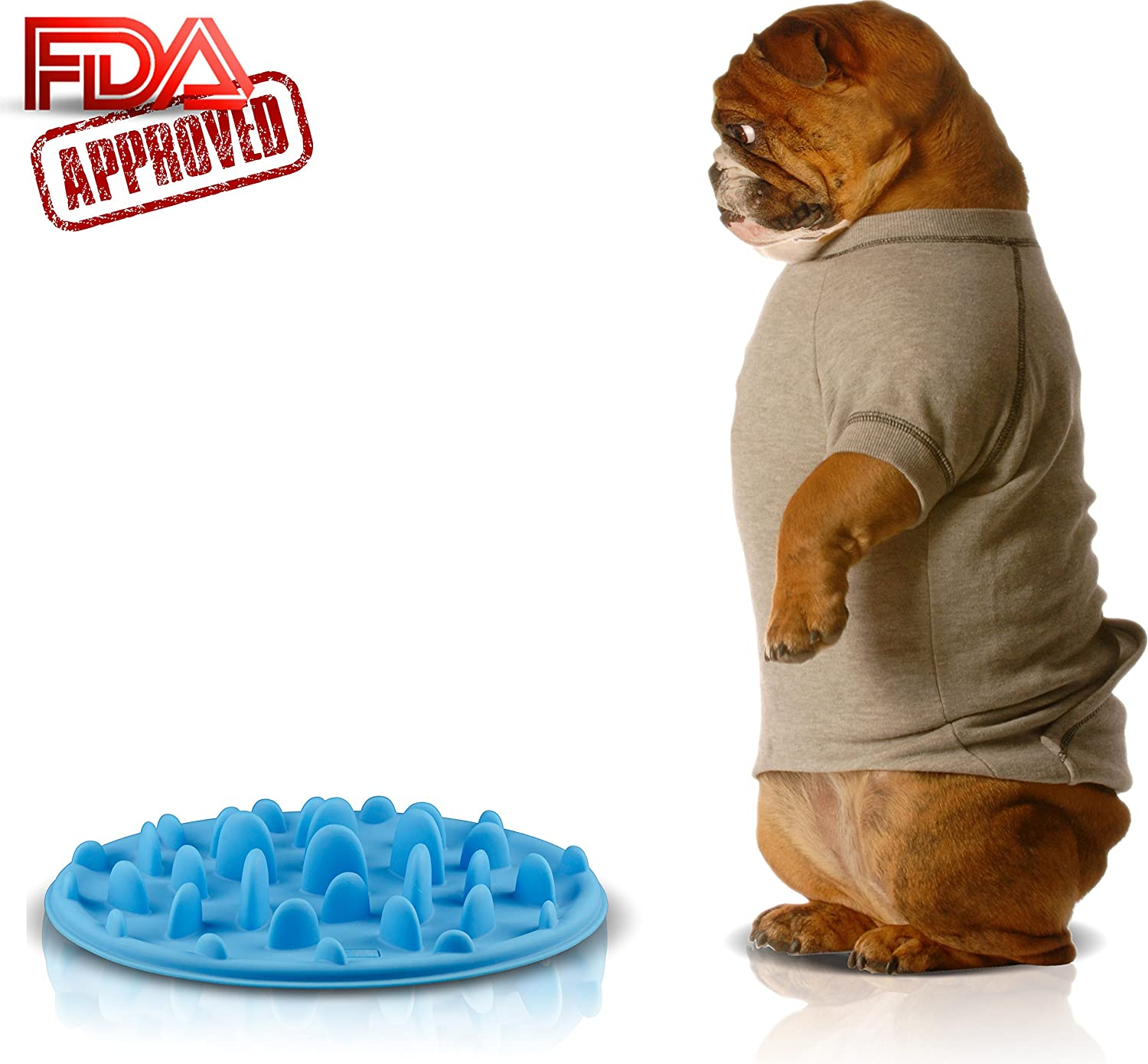 feed best simply feeder supergrail in bowls dog feeders online bowl maze a and pets slow