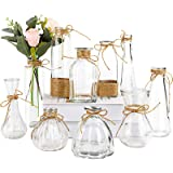 Nilos Glass Vases Set of 10, Clear Vintage Glass Flower Vase with Rope Design and Differing Unique Shapes for Home Decoration