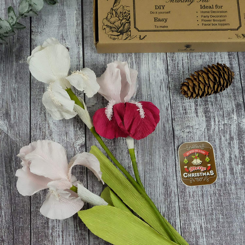 Amazon Com Paper Flowers Kit Unique Birthday Thanksgiving Christmas