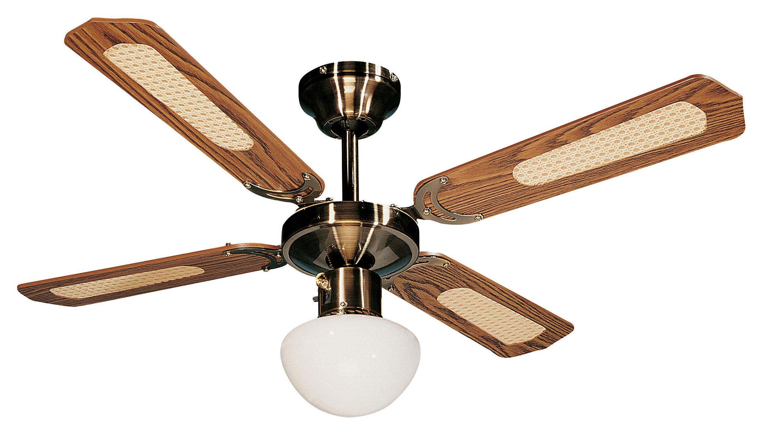Farelek Bali Ventilateur de plafond 107 cm Brun product image