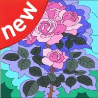 Happy Color: Flower Coloring By Number