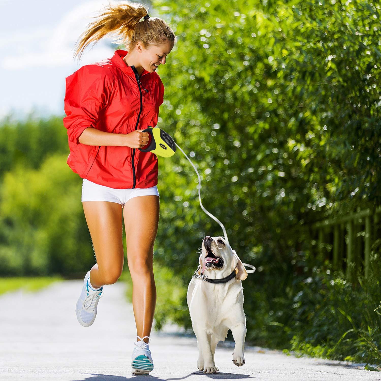 Pecute Retractil Correa de Perro con un Botón de Freno & Lock Correa Extensible Cuerda de Nylon Resistente y Duradero Extensible Hasta 5M de Libertad y Protección Soporta Mascotas Hasta 50KG Color Verte+Negro