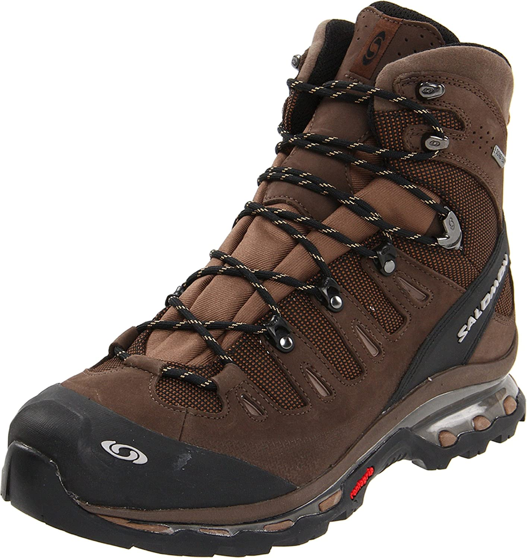 Salomon Men's Quest 4D GTX Backpacking Boot,Absolute Brown-X/Burro/Wood Beige,12 M US