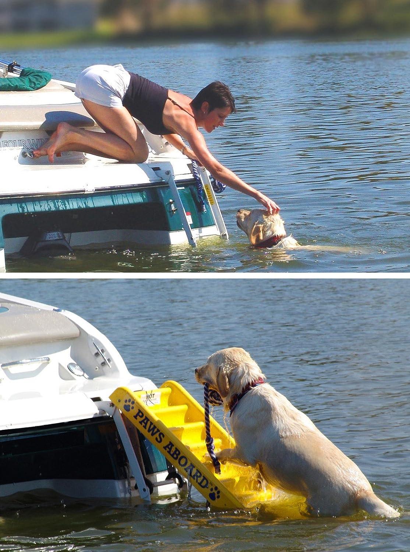 Dog Boat Ladder Steps Boarding Family Fun Portable