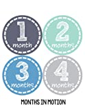 Amazon Price History for:Months in Motion 115 Monthly Baby Stickers Baby Boy Month 1-12 Milestone Sticker