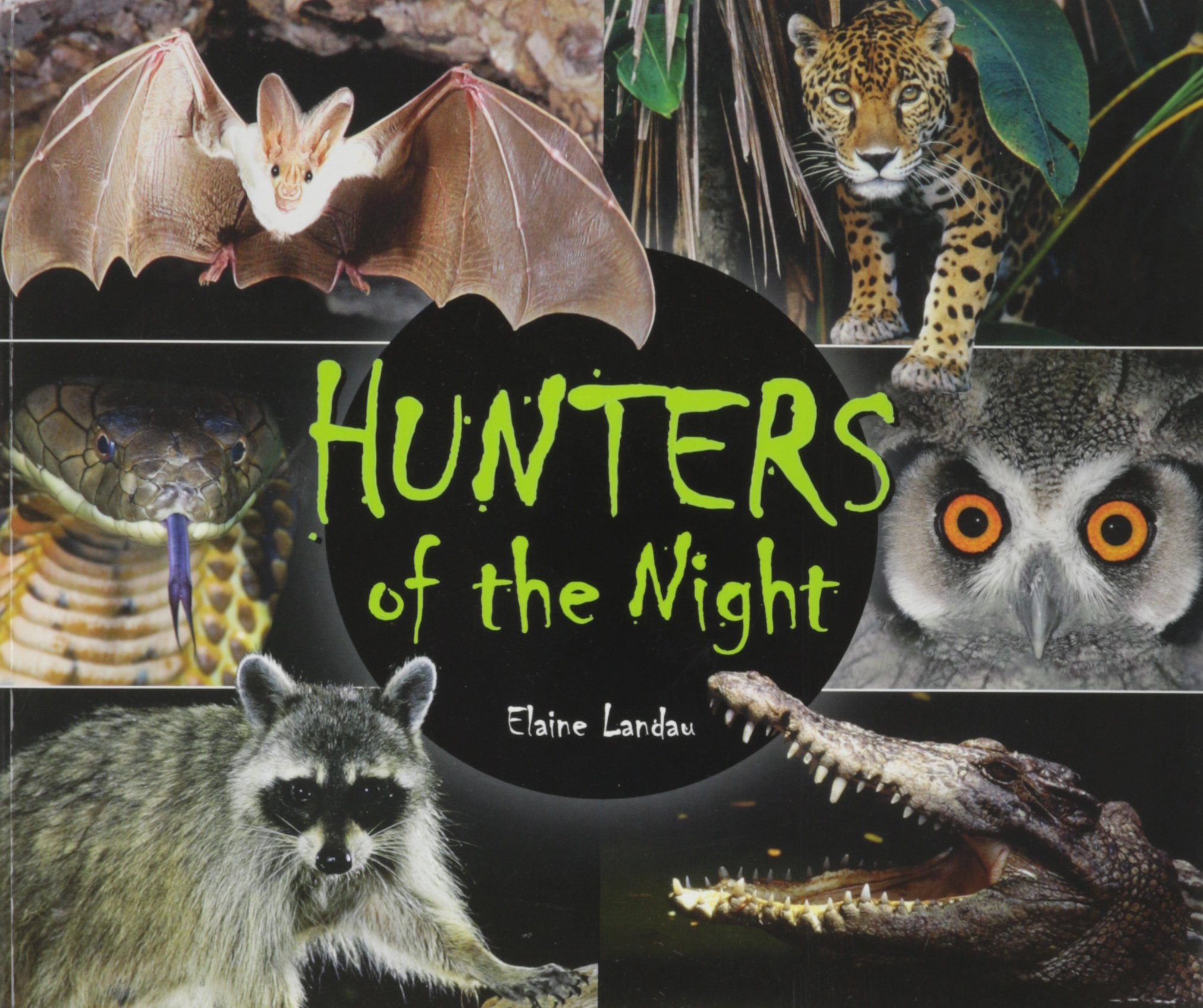 Hunters of the Night