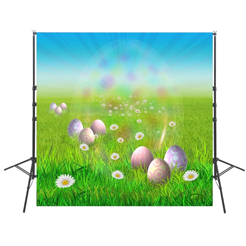 写真背景 ハッピーイースター ビニール製 子供用背景 デジタル印刷写真背景 写真スタジオ用 8X8FT GE330 B07NQDHCCM
