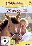 Pferd und Pony: Mein Gestüt