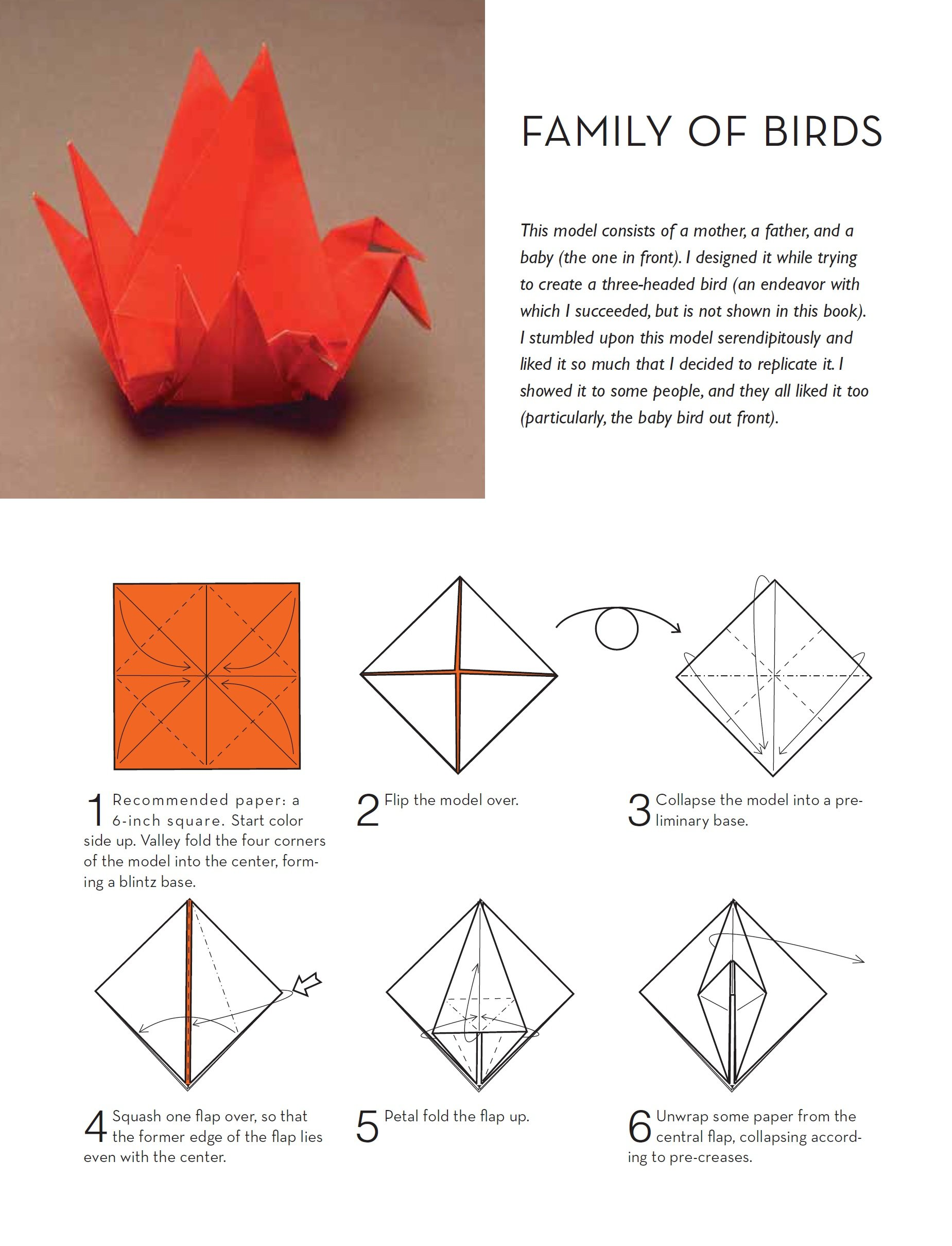Outside the box origami a new generation of extraordinary folds outside the box origami a new generation of extraordinary folds includes origami book with 20 projects ranging from easy to complex scott wasserman jeuxipadfo Choice Image
