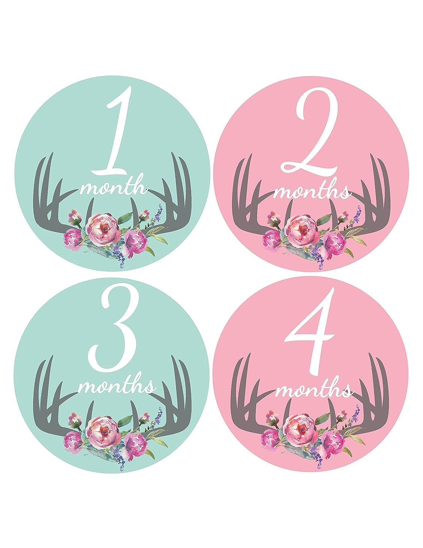 Monthly Baby Stickers - Baby Month Stickers - Newborn Photo Prop - Deer Antler