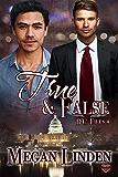 True & False (The DC Files Book 4)